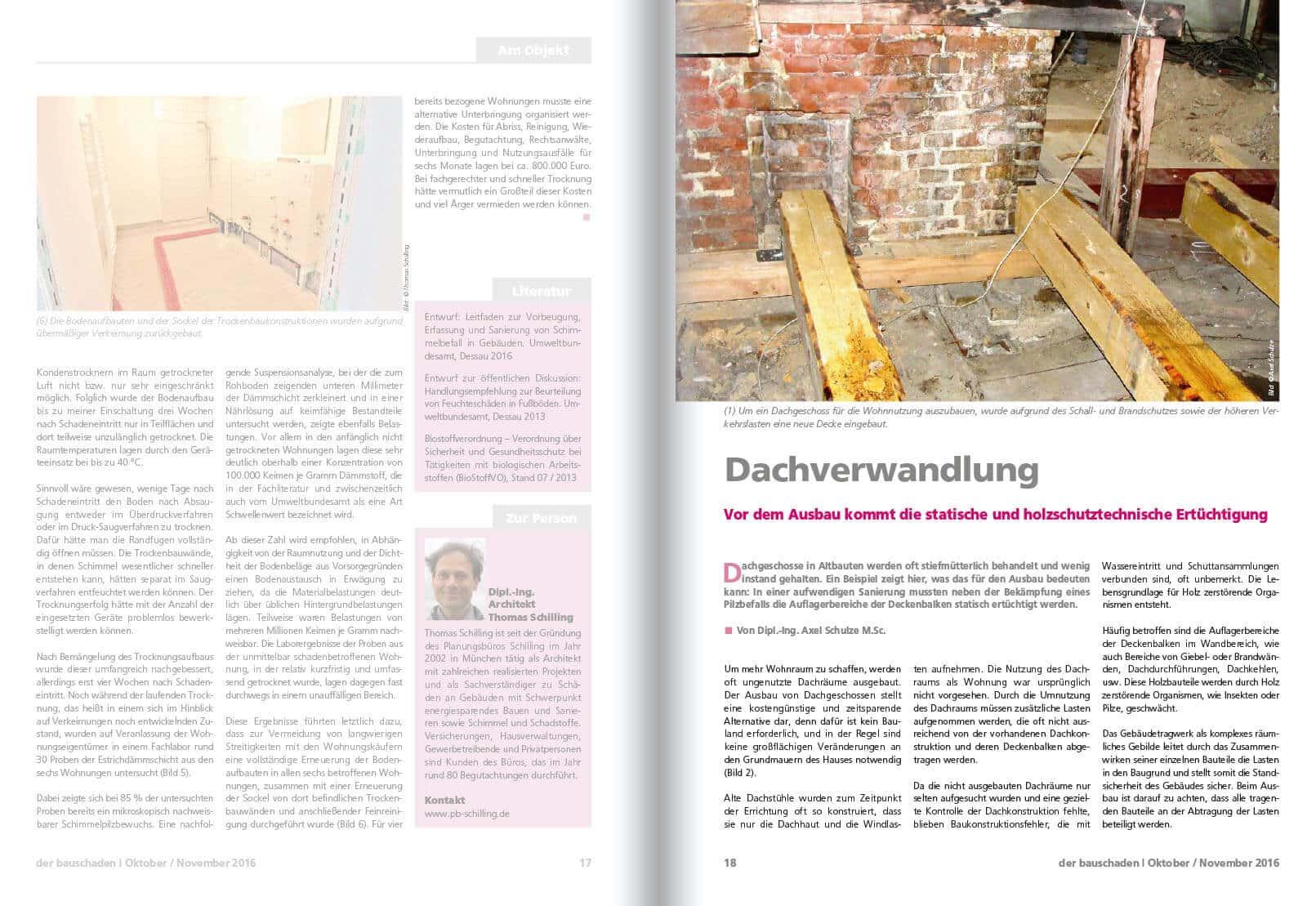 2016-10_Dachverwandlung_001