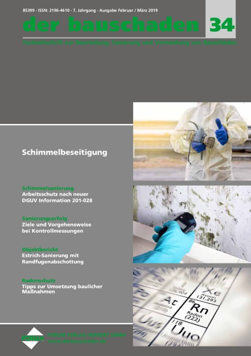 cover der bauschaden 2019-02