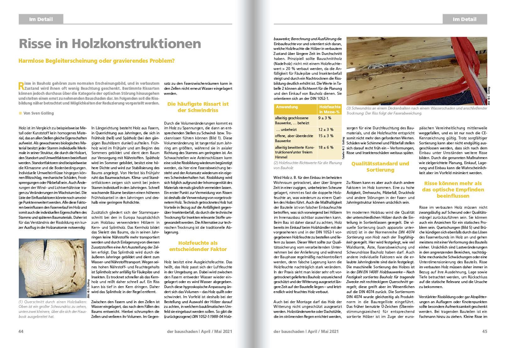2021-06 Risse Holzkonstruktionen 1