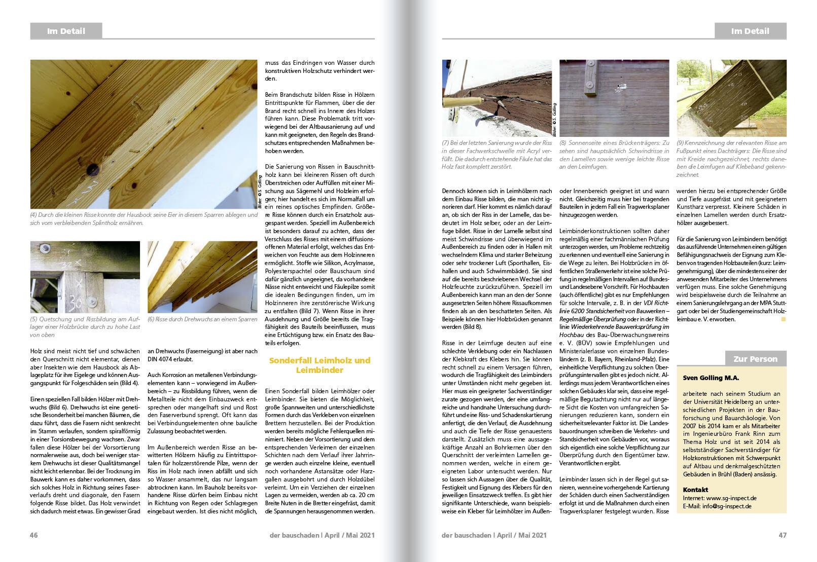2021-06 Risse Holzkonstruktionen 2
